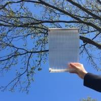 Polycarbonat für Bausatz Terrassendach X Struktur 16mm klar