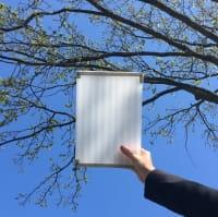Polycarbonat für Bausatz Terrassendach X Struktur 16mm opal